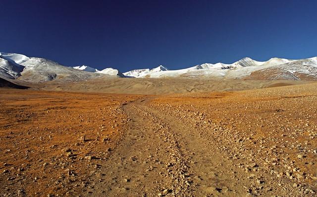 チベット自治区のニンティ市(J.P.Dividson)