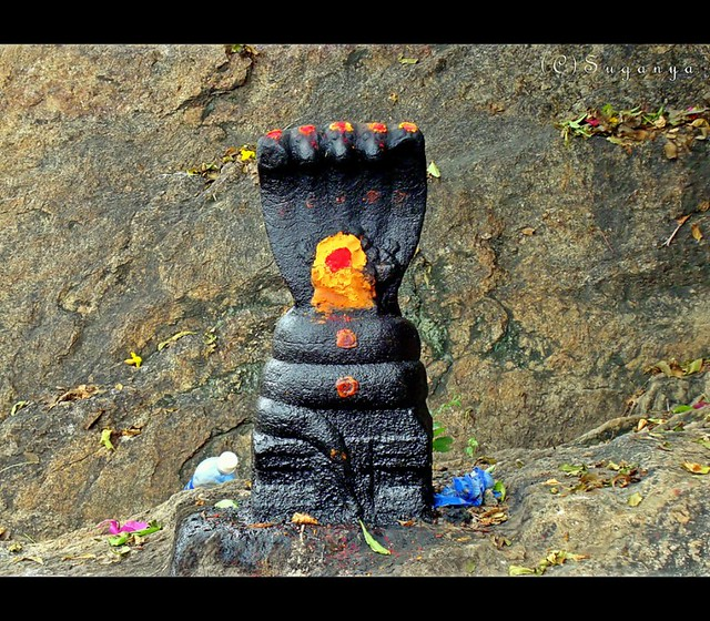 snake god palani is home to one of the most sacred