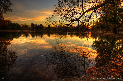 Golden Hour on duck pond - over 1000 comments! Yippeeee! | by StanfordSumi