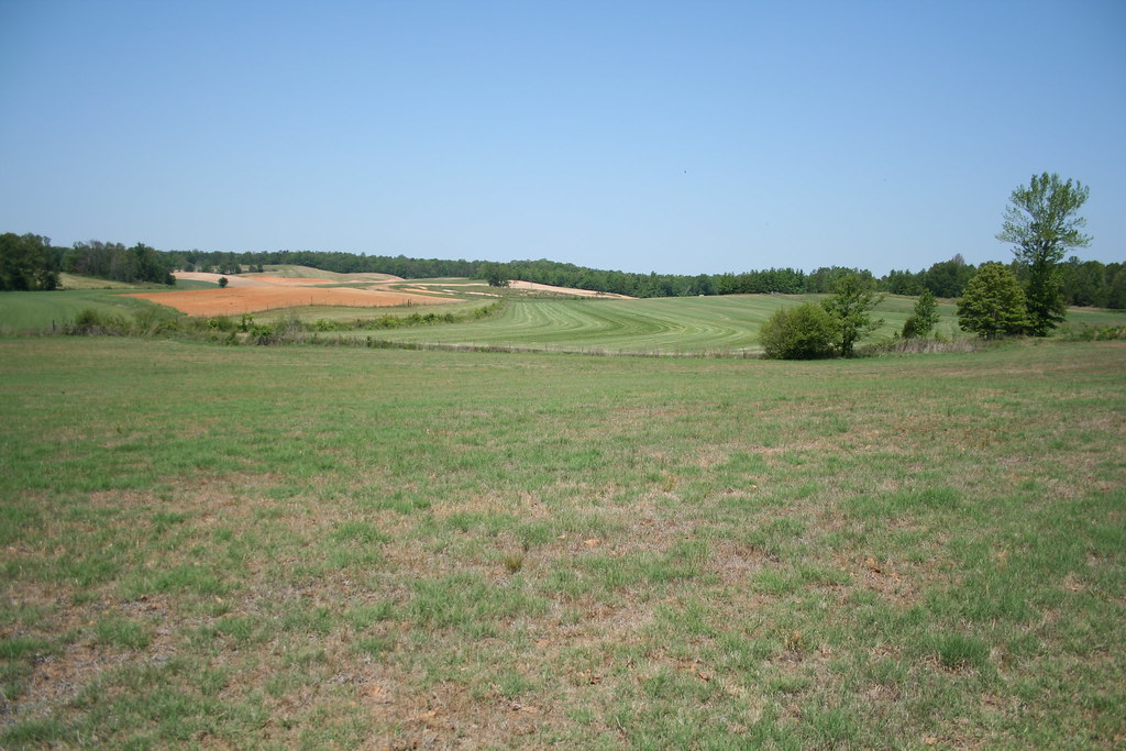 TN Farm for Sale near Jackson TN 128 acres of beautiful …