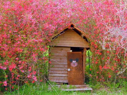 La cabane au fond du jardin dominique montestier flickr - La cabane au fond du jardin laurent gerra ...