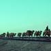 Silk Road 1992