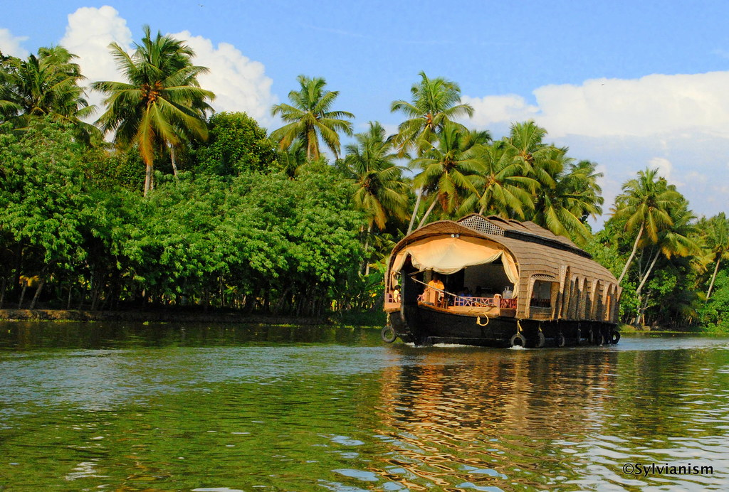 Kerala's Glory In My Amateur Lenses - The