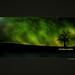 Northern Lights: Wallpaper