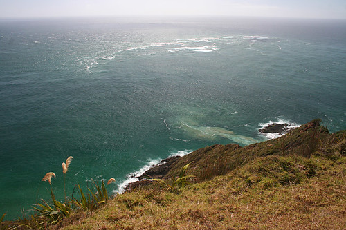 where the two oceans meet new zealand
