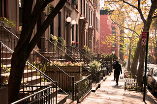 stoops, 200 block of Hicks Street, Brooklyn Heights, New York | by lumierefl