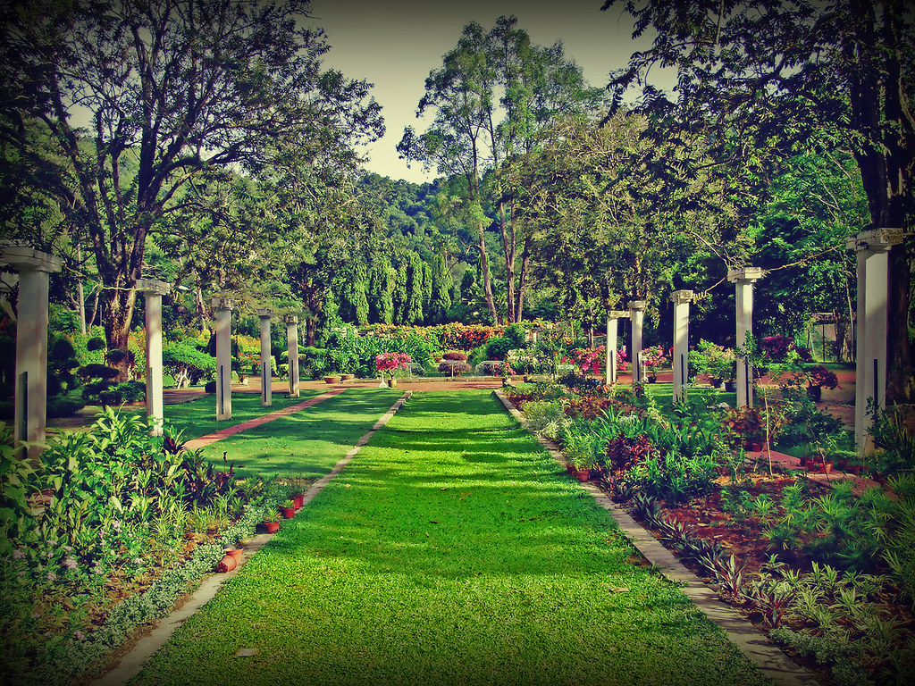 Penang Botanical Garden The Penang Botanic Gardens Also K Flickr