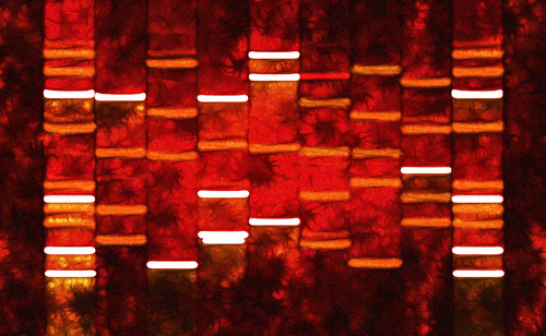 Abstract Red DNA Art Paintings on Canvas | by DNA Art Gallery LLC