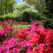 The Osborne Garden