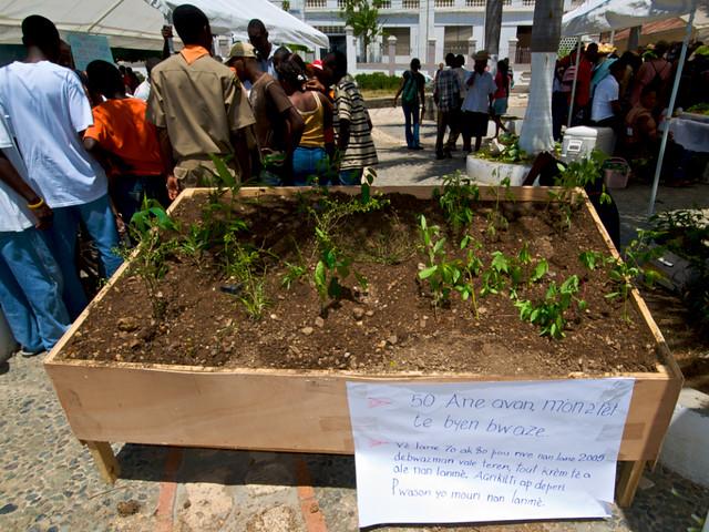Model of apcha 39 s reforestation soil conservation program u for Soil 3d model