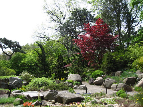 Rock Garden | by Brooklyn Botanic Garden