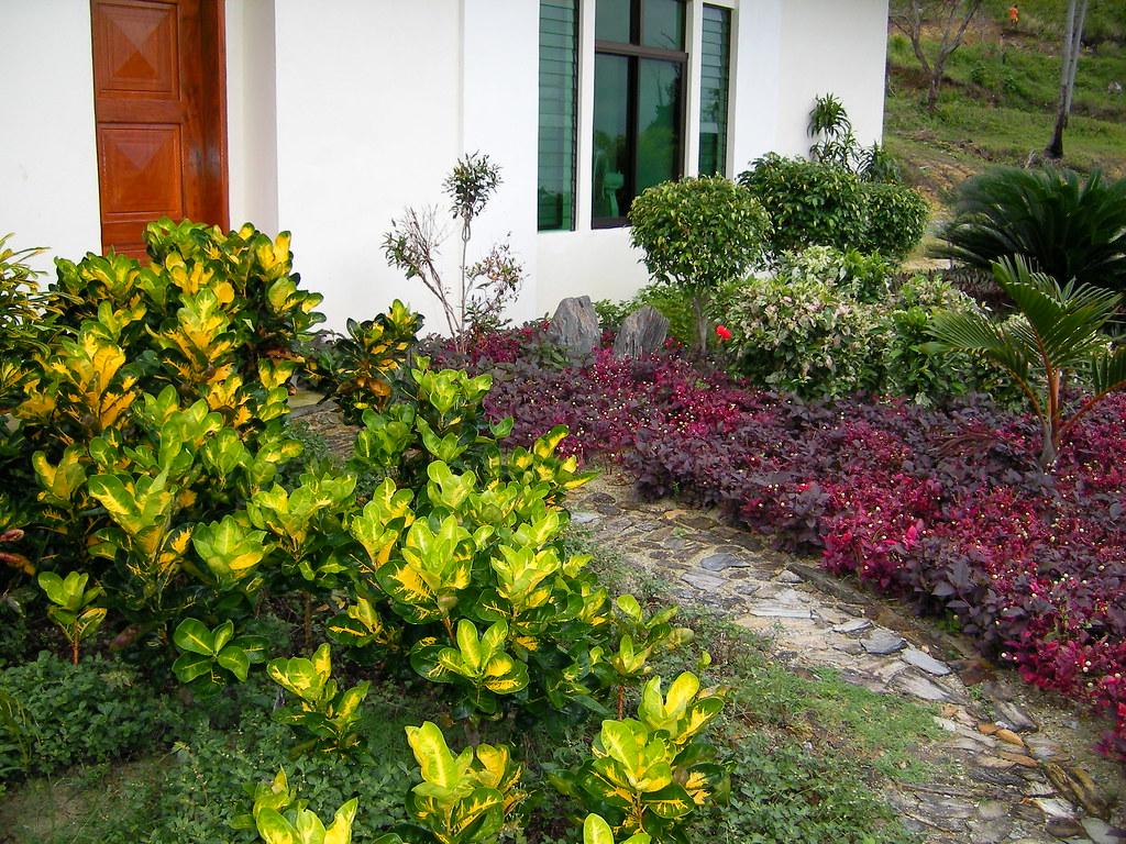 Tropical Garden Design Romblon Philippines Romblon Phil Flickr