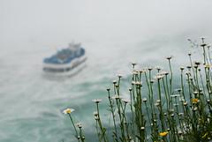 Maid of the Mist - Niagara by dhaneshr