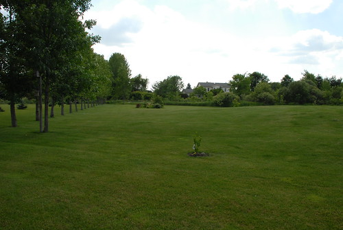backyard football field laurie turpin flickr