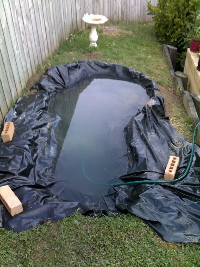 Backyard Turtle Pond   Under construction.   Yortw   Flickr