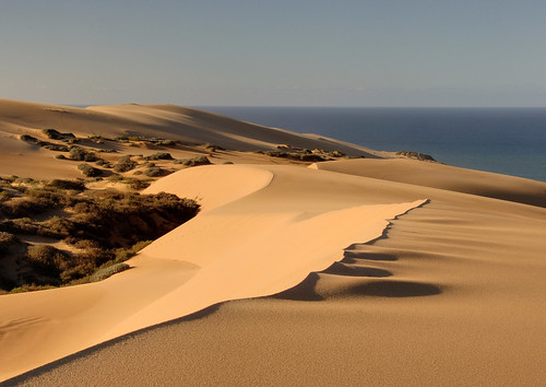 Dune's Edge | by Marc Briggs