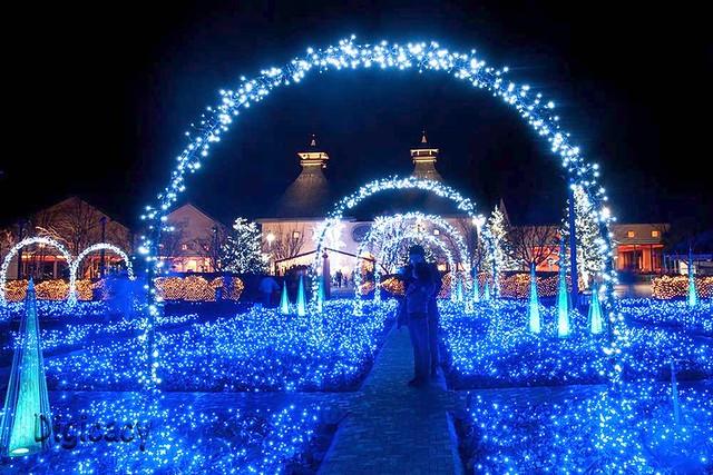 ... LED Garden / 光の雲海 | By Digicacy