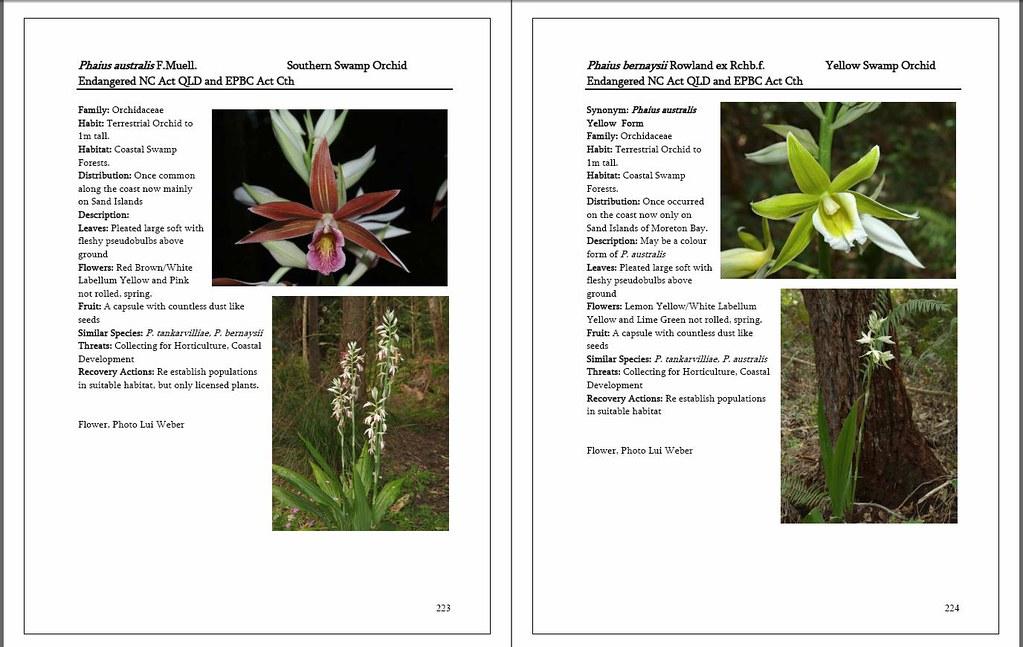 Randtplantsseqldpp223 224 Draft Sample Pages From My Upcom Flickr