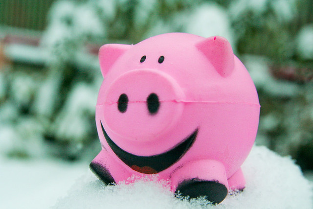 Pink Squishy Pig in Snow 1002242 Steven Depolo Flickr