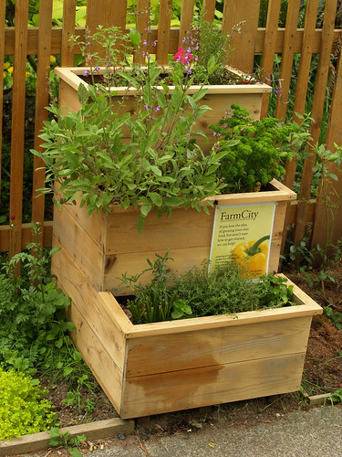 Tiered herb garden darach seaton flickr - Herb gardens for small spaces gallery ...