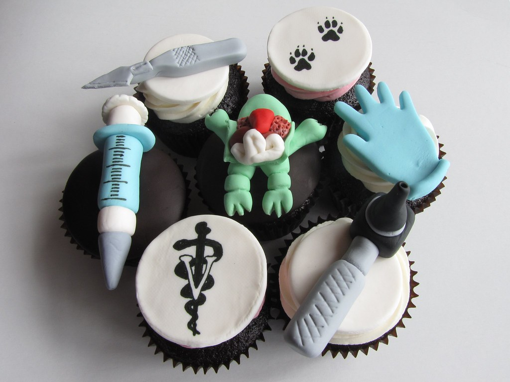 Animal Biology Cupcakes Chocolate Cupcakes Frosted With