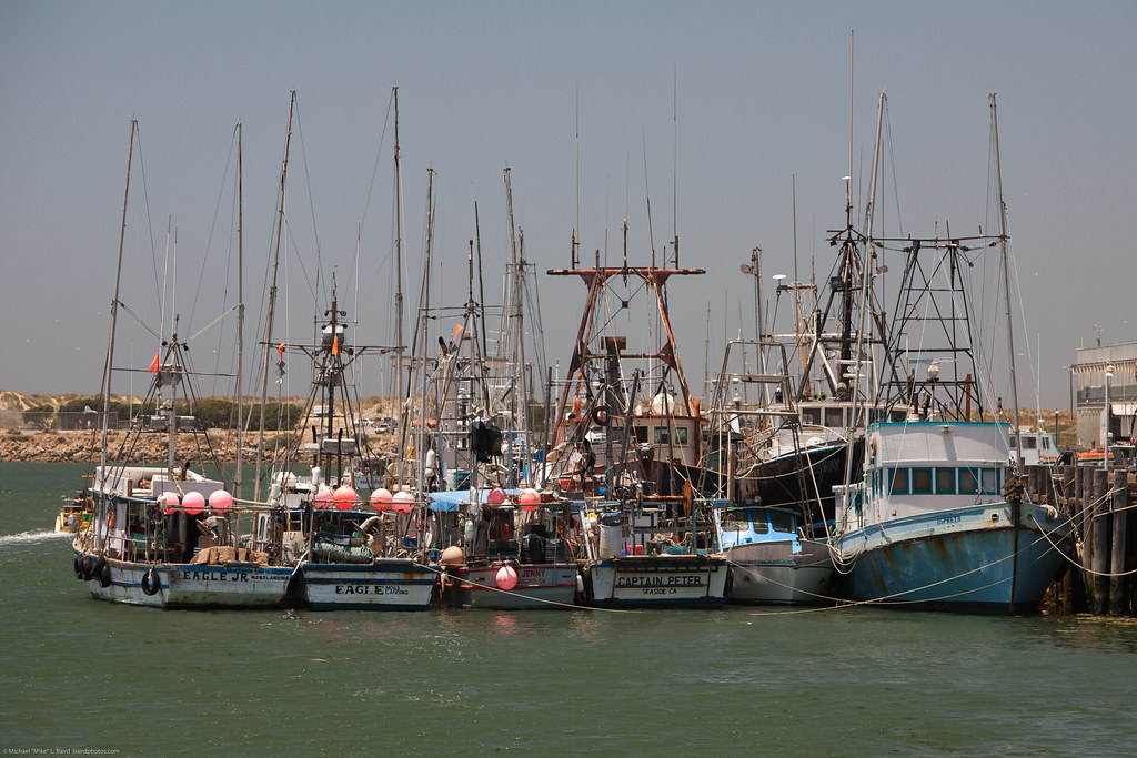 Commercial fishing vessels at north t pier morro bay sc for Morro bay fishing