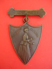 Nunquam Non Paratus | Never unprepared. A Nursing badge ...