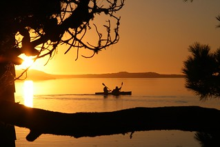 7f. Sunset Paddle on the Russian River | by kqedquest