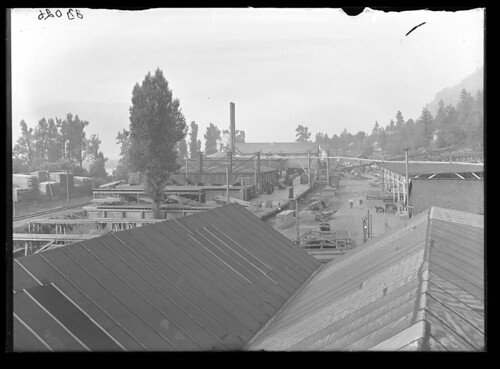 Bridal Veil Lumber Company planing mills | by The Field Museum Library