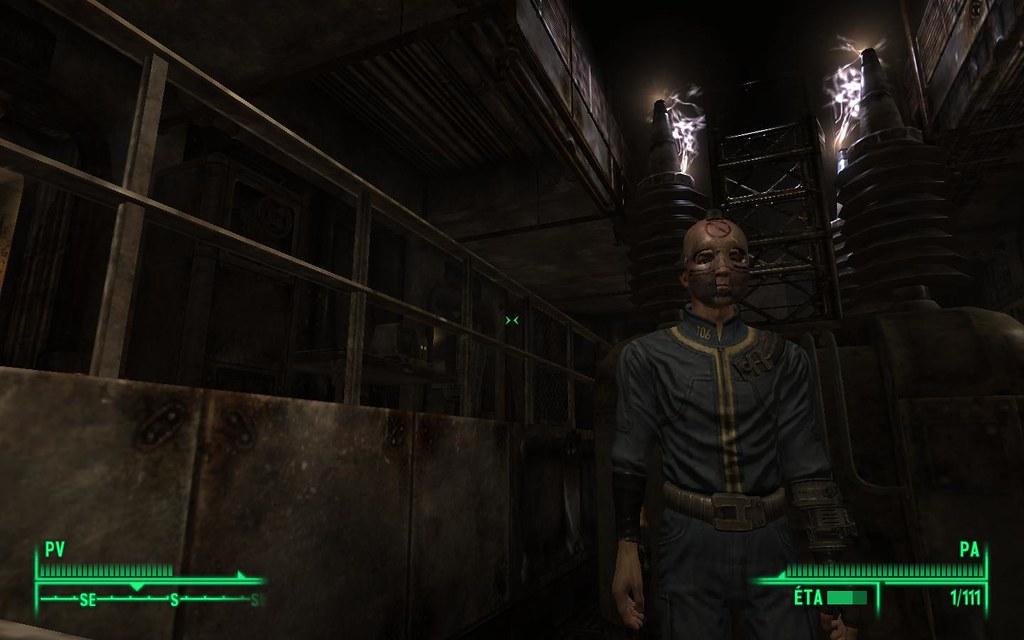 Fallout  Cat Settler Hear Anything