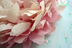 Tissue Paper Peony | by such pretty things