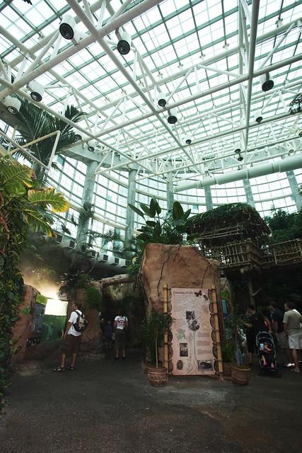 Audubon Aquarium Of Americas New Orleans Flickr Photo