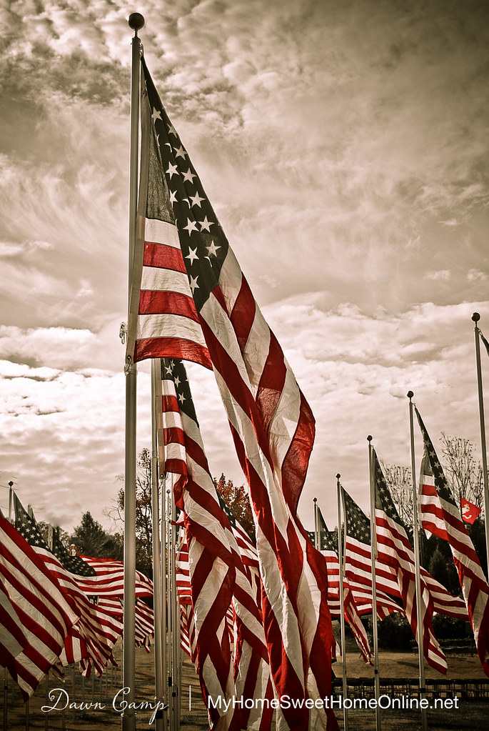 0811_VeteransDay_003