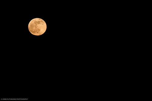 Blue Moon on New Year's Eve 2009 | Anne Ruthmann | Flickr  Blue Moon on Ne...
