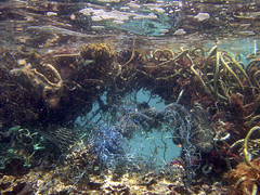 Marine Debris is a Global Problem | by NOAA's National Ocean Service