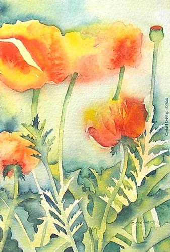 flower art orange poppies watercolor