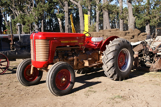 1956 Massey Ferguson 40 Tractor : Massey harris tractor the ferguson f is