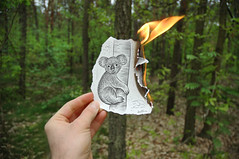 Pencil Vs Camera - 15 | by Ben Heine