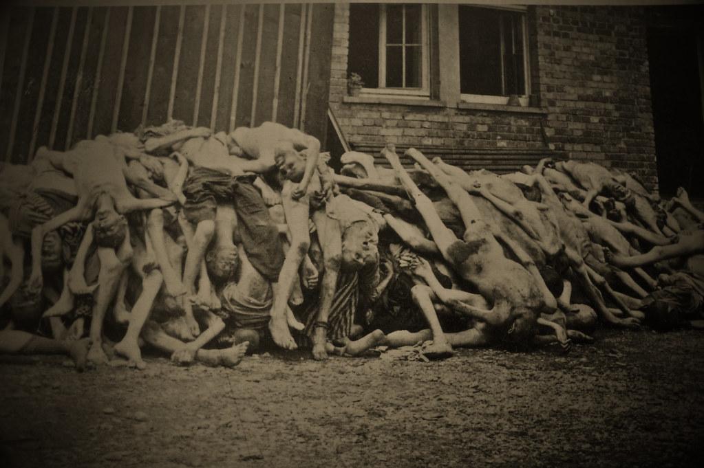 Singler Dachau gratis
