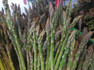 Asparagus from Wish Well Farms | by swampkitty