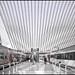 Calatrava architecture (Explore)