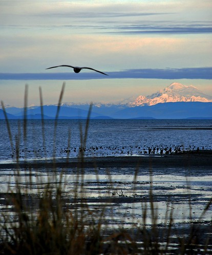 Dungeness Bay Sequim