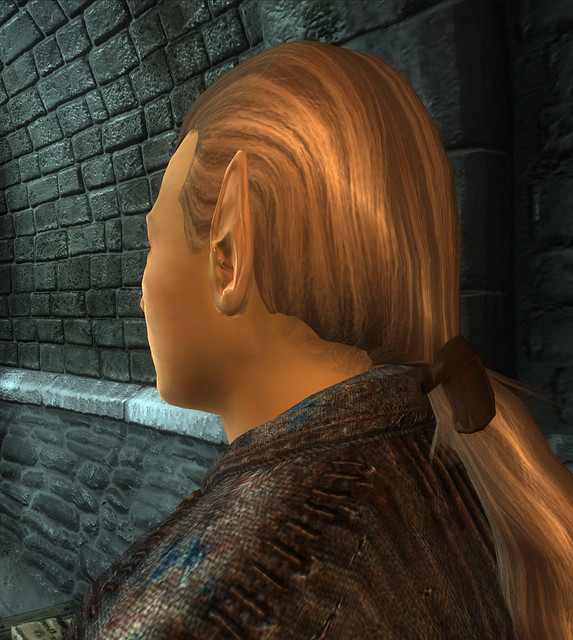 Male High Elf Hair
