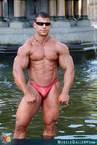 Stuart bernstein bodybuilder apologise