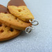 Chocolate Dipped Biscotti Pendants