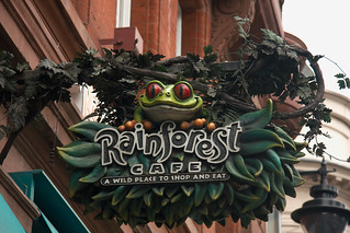 Rainforest cafe | by mariosp