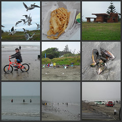 365/24 - surfcasting | by dragonsinger