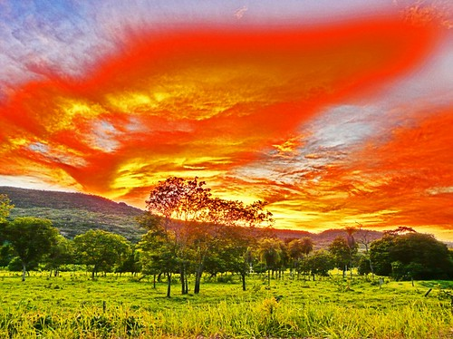 Wild sunset (HDR) | by JC Patricio Photography