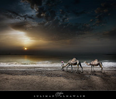 TRAVEL | by suliman almawash