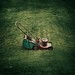 Vintage / Retro / Lawnmower / Grass